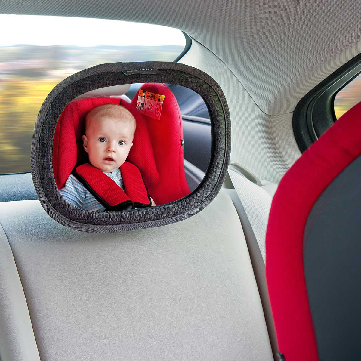 Baby Car Accessories  Car Seat Accessories  LittleLife Portugal
