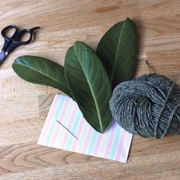 Little Explorers: Leafy Love